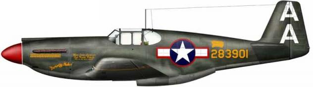 Apache a 36 42 83901 bradic