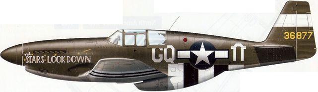 Mustang p 51b 5 43 6877
