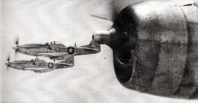 Mustang p 51d 506th fg