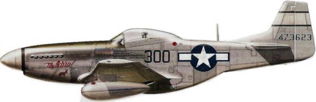 Mustang p 51d 531st fs 21st fg
