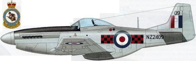 Mustang p 51d nz2409
