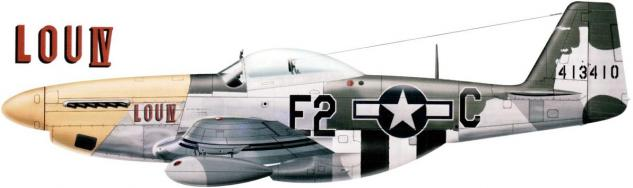 north-american-p-51-d-mustang-guillou.jpg
