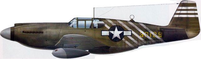 P 51 a cochran 1