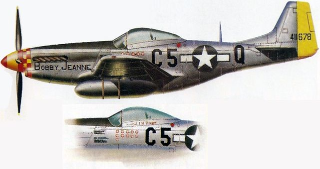 P 51k irwin dregne